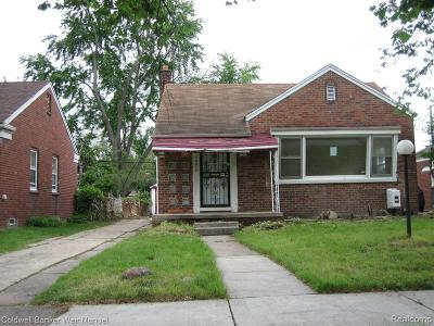 Single Family Home For Sale: 20034 Freeland St