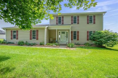 Dexter Single Family Home For Sale: 9765 Horseshoe Bend