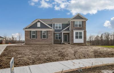 South Lyon Single Family Home For Sale: 51581 Wales Crt
