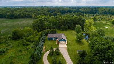 Jackson Single Family Home For Sale: 1345 N Portage Rd