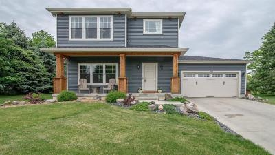 Chelsea Single Family Home For Sale: 801 Provincial Dr