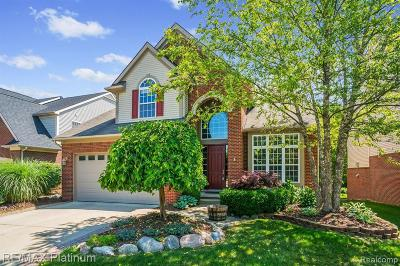 Northville Single Family Home For Sale: 16544 Mulberry Way