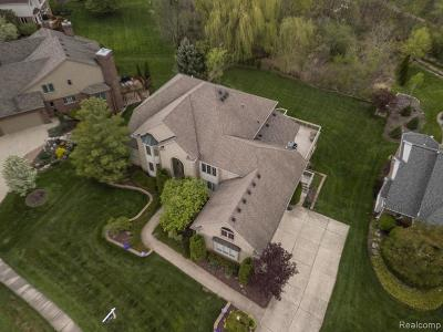 South Lyon Single Family Home For Sale: 22892 St Andrews Dr