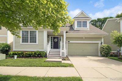 Novi Single Family Home For Sale: 43008 Emerson Way Dr