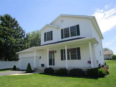 Lenawee County Single Family Home For Sale: 1991 Harold Street
