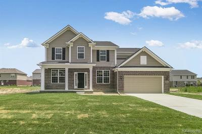 Novi Single Family Home For Sale: 25960 Oberlin Blvd