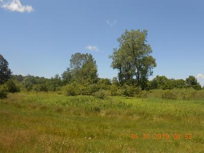 Manchester MI Residential Lots & Land For Sale: $225,000