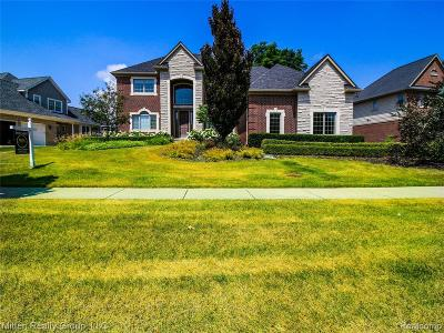Northville Single Family Home For Sale: 18213 Parkshore Dr