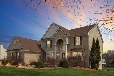 Dexter Single Family Home For Sale: 7160 Hickory Creek Dr