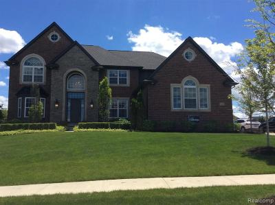 South Lyon Single Family Home For Sale: 51619 Turnburry Dr