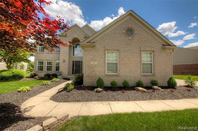 Canton Single Family Home For Sale: 525 Springfield Dr