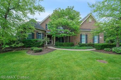 Novi Single Family Home For Sale: 25067 Samoset Crt