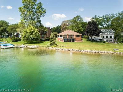 West Bloomfield Single Family Home For Sale: 2815 Warner Drive