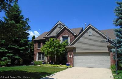 Novi Single Family Home For Sale: 22455 Fuller