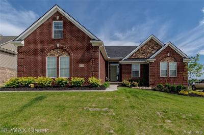 South Lyon Single Family Home For Sale: 51794 N Enclave Dr