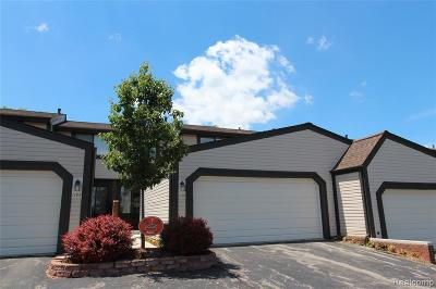 Northville Condo/Townhouse For Sale: 1156 Concord Crt