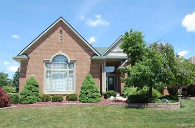 Canton Single Family Home For Sale: 45914 Fountain View Dr