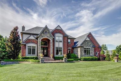 Novi Single Family Home For Sale: 51011 Glades Crt W