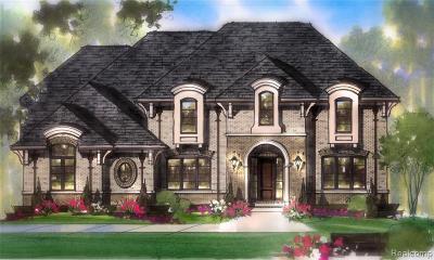 Ann Arbor Single Family Home For Sale: 2880 Skyline Way