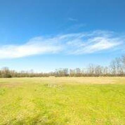 Whitmore Lake MI Residential Lots & Land For Sale: $549,000