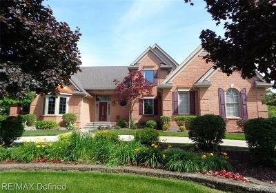 Northville Single Family Home For Sale: 17418 Stonebrook Dr