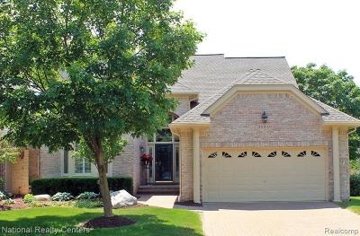 Plymouth Condo/Townhouse For Sale: 48449 Beaver Creek Dr