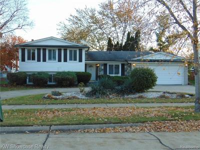 Southfield Single Family Home For Sale: 21315 Constitution St