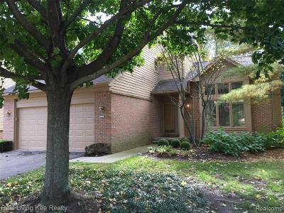West Bloomfield Condo/Townhouse For Sale: 6620 Heron Pnt