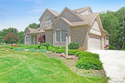 Milford Single Family Home For Sale: 4591 Windswept Dr