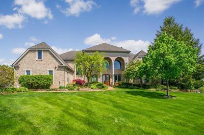 Ann Arbor Single Family Home For Sale: 4335 Diuble Rd