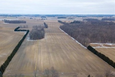Adrian MI Residential Lots & Land For Sale: $250,000