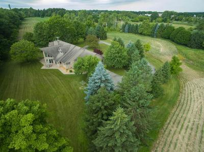 Chelsea Single Family Home For Sale: 13705 Trinkle Rd