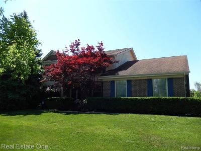 Novi Single Family Home For Sale: 22220 Cascade Dr