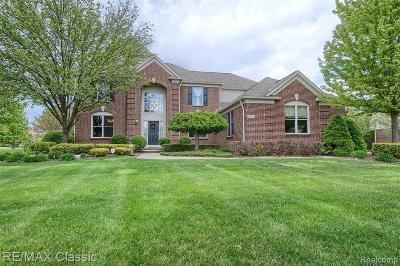 Canton Single Family Home For Sale: 48662 Central Park Dr