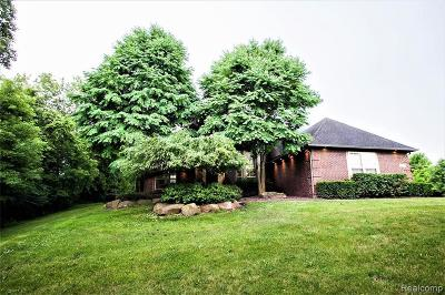 South Lyon Single Family Home For Sale: 13232 9 Mile Rd