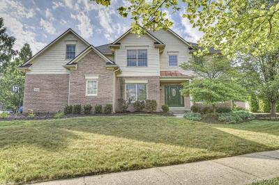 Novi Single Family Home For Sale: 22139 Barclay Dr