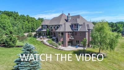 Ann Arbor Single Family Home For Sale: 8786 W Liberty Rd