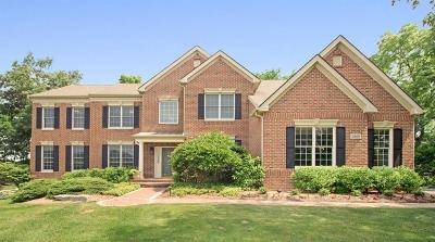 Ann Arbor Single Family Home For Sale: 2868 Walnut Ridge Dr.