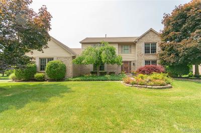 Novi Single Family Home For Sale: 24545 Picara Dr