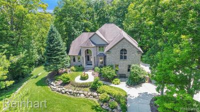 South Lyon Single Family Home For Sale: 11408 Nine Mile Rd