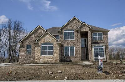South Lyon Single Family Home For Sale: 55172 Forestview Dr