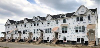 Northville Condo/Townhouse For Sale: 47749 Alden Terrace North