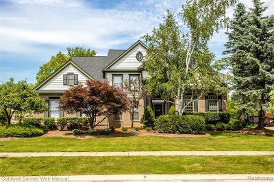 Novi Single Family Home For Sale: 47154 Sunnybrook Ln