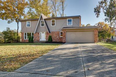 Southfield Single Family Home For Sale: 20965 Independence Dr