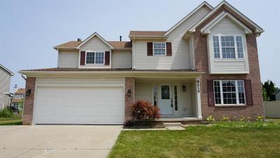 Belleville Single Family Home For Sale: 9535 Dalton Dr