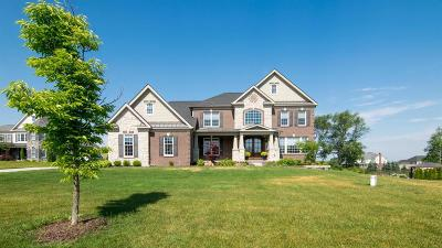 Ann Arbor Single Family Home For Sale: 2210 Kimberwicke Ct