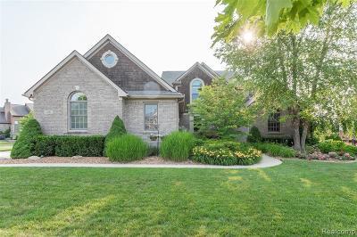 South Lyon Single Family Home For Sale: 23795 Shinnecock Dr