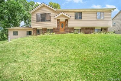 Lake Orion Single Family Home For Sale: 655 Ferndale Ave