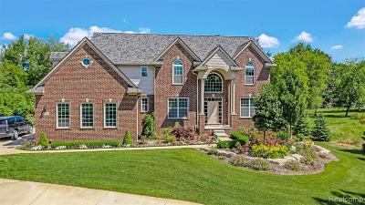 Wixom Single Family Home For Sale: 53560 W 12 Mile Rd