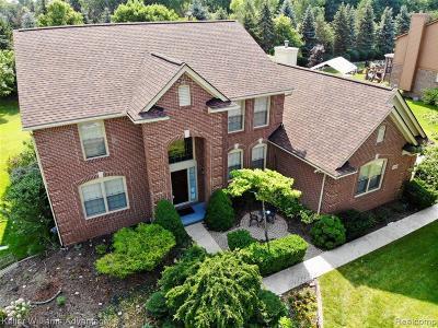 Novi Single Family Home For Sale: 47453 Greenwich Dr